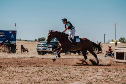 Horse and rider running