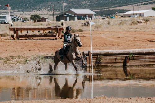 Horse running through water with rider