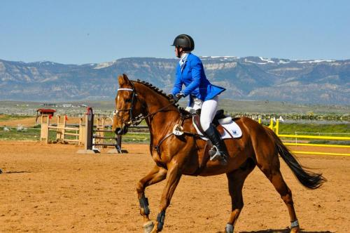 Horse and trainer riding